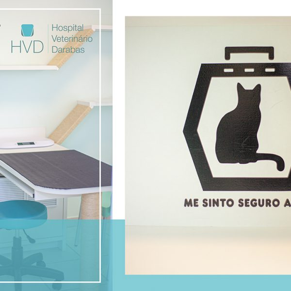 O Hospital Veterinário Darabas conta com o selo Cat Friendly Practice (Clínica Amiga do Gato)